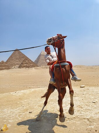 the pictures belong to iEgypt and have been taken during our tours & can't be used for any purposes.