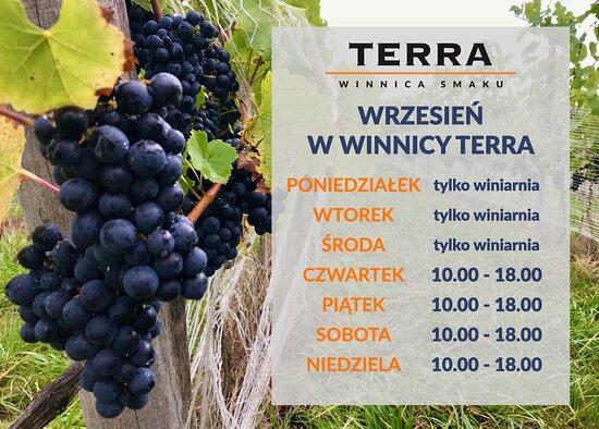 TERRA Winnica Smaku Winery