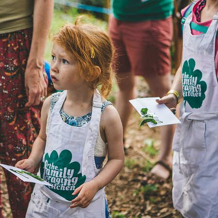 A photo taken from one of our Wild School sessions, teaching homeschooled children all about wild foods!