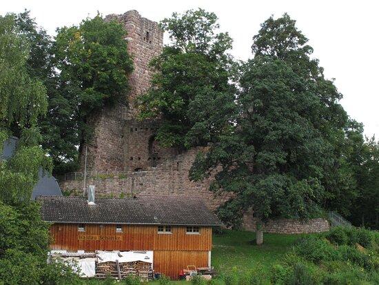 Burgruine Waldau