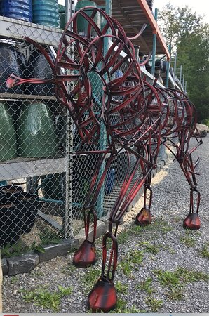 Tweed, Canada: Most sculptures are made of stone or wood, however there is this beautiful horse sculpture made from scrap metal... all of the pieces are for sale so this one might not be there anymore.