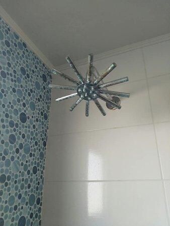 душ, который чистили последний раз непонятно когда