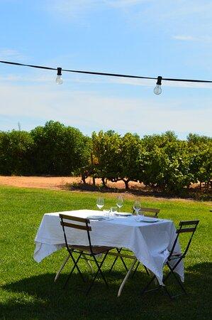 Vineyard Tour and Wine Tasting in Lagoa: Credits Prunellia Le Gendre
