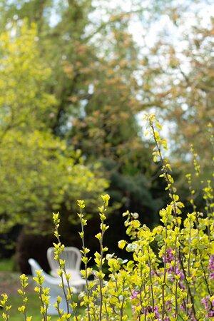 Private garden en terras with seating area and sun umbrellas.
