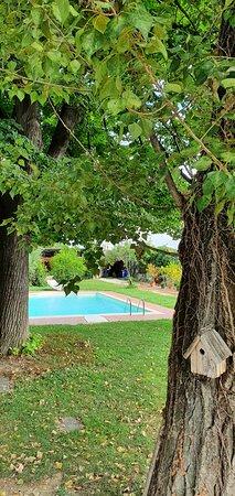 Bolonia, Italia: Piscina y jardines...