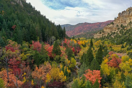 Fall color views along Scenic Byway 143, Parowan Canyon. Between the town of Parowan and Brian Head there's a beautiful fall landscape waiting to be discovered.