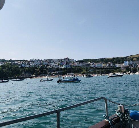 New Quay boat trip