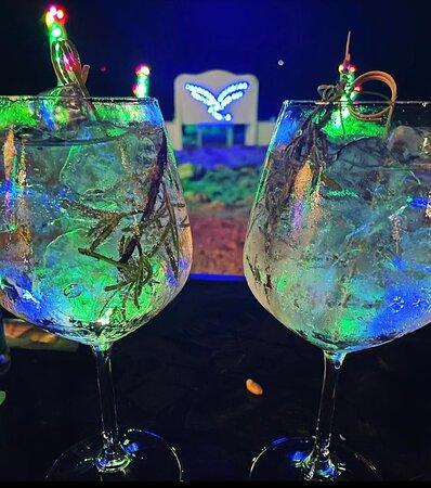 Oltre 50 etichette di Gin Premium ... impossibile non accontentare i vostri palati ...