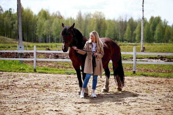 Конные прогулки вдоль Волги с инструктором не оставят равнодушным никого из гостей.
