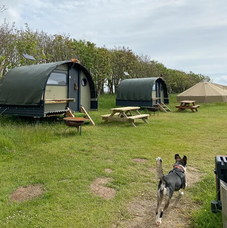 The other glamping options - Landpods and Bell tents