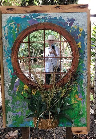 """Bird Watching Carara National Park or San Jose Central Valley.: """"Grow"""" photo with live plant at entrance to exhibit"""
