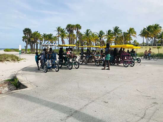 Large group rents all of our Surreys/Quadricycles.