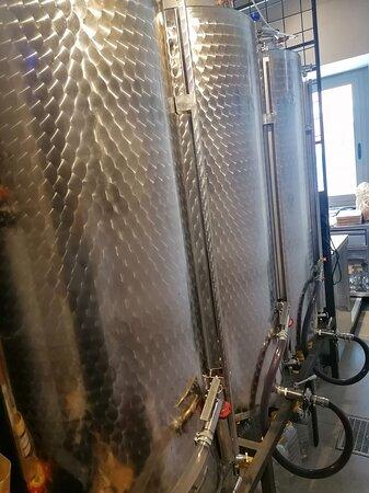 Da NOI troverai una grande selezione di vini sfusi a prezzi convenienti e di aziende rinomate e certificate. Impianto termocontrollato in azoto alimentare