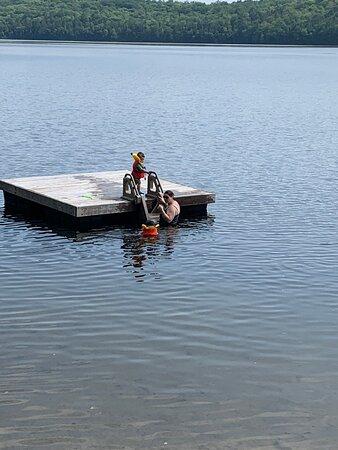 "Port Loring, Canada: Some views of the resort including docks, swim platform and ""beach""."