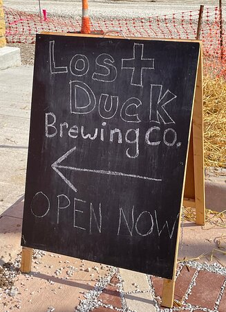 Great brew pub next door