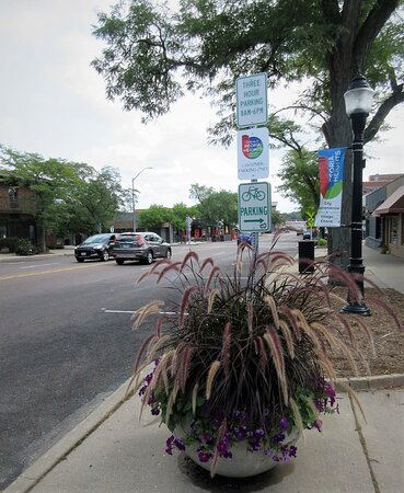 Peoria Heights, IL: Keep the Heights prairie-beautiful! August 2021