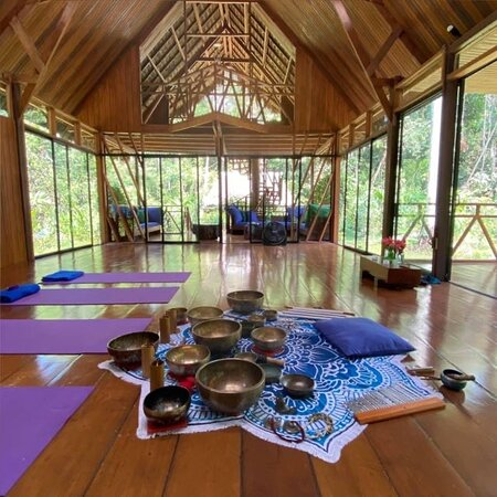 yoga center for meditation and amazon culture. Connect with your soul