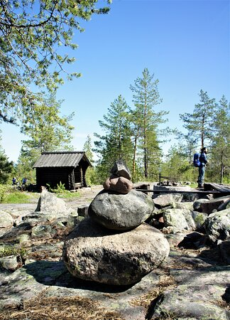 Forest Hike in Luleå