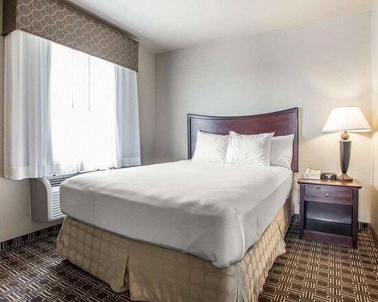 Suite with queen bed