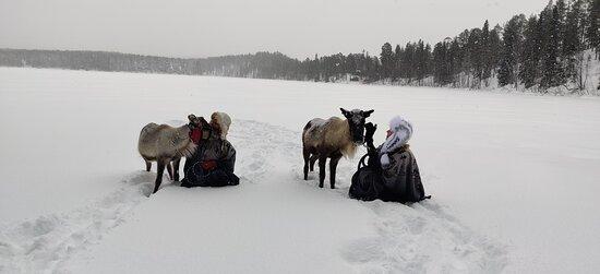 Nihke-poro & Kirsi ja Urho-Poro & Mari Naamankajärvellä