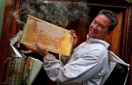 The House of Honey