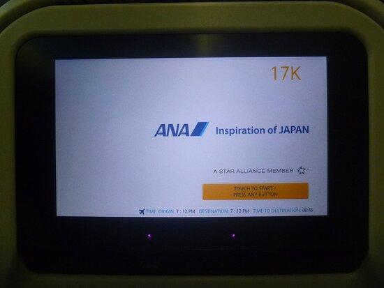 ANA (All Nippon Airways): 787-8 Dreamliner JA829A