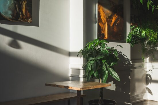 We love our plants too. You could be having your morning coffee right here!