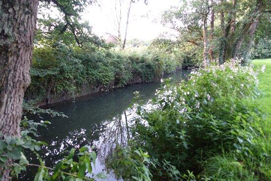 Little river at the back garden
