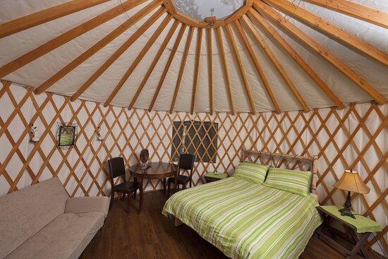 Yurt for rent!