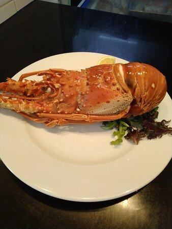 Temos lagosta