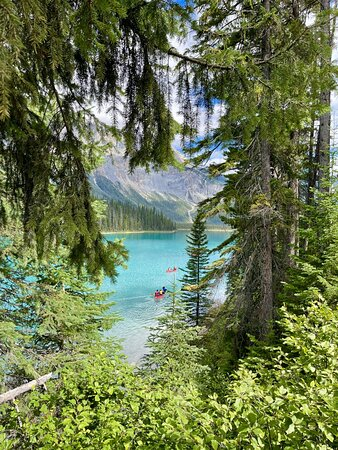 We stopped to walk at the incredible Emerald Lake and had our lunch at the historic Emerald Lake Lodge.