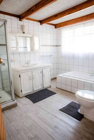 Luxury Loft Family Room Bath