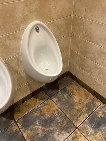 The Trawl Grimsby what a sh## hole toilets leaking wading though  piss !god to think what the kitchen are like Tell green king to shut up shop and leave