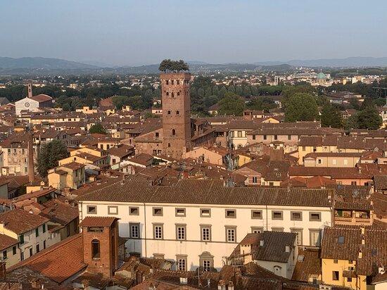 Lucca, Italien: Visuale della Torre Guinigi