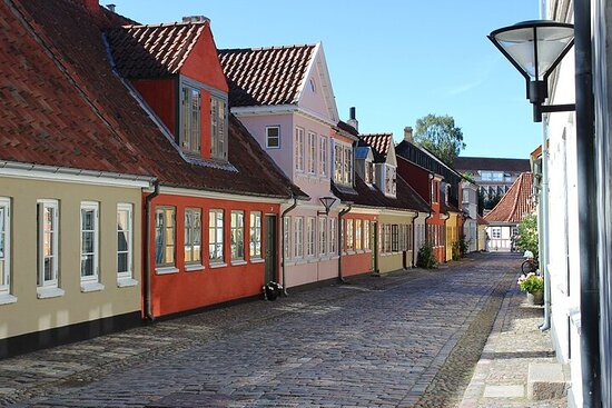Odense Private Walking Tour