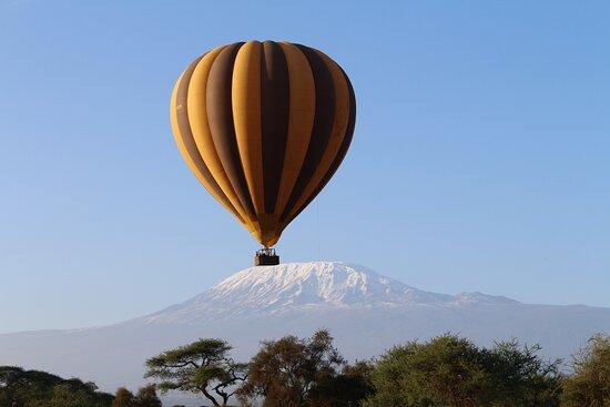 Amboseli National Park صورة فوتوغرافية