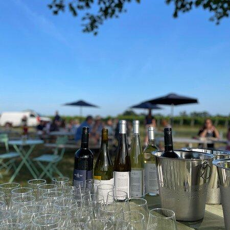 Peconic Bay Vineyards