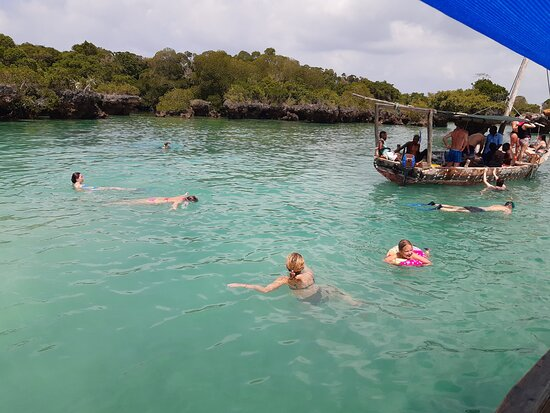 Blue Safari this is one among of unforgetable trip in Zanzibar