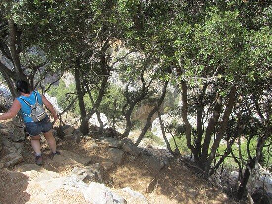 steep paths