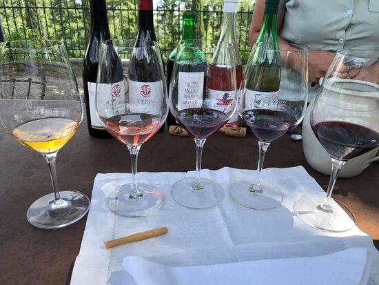 Roccatederighi, Italia: vini
