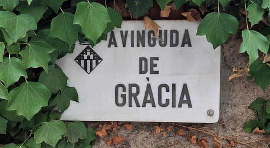 Avingunda De Gracia