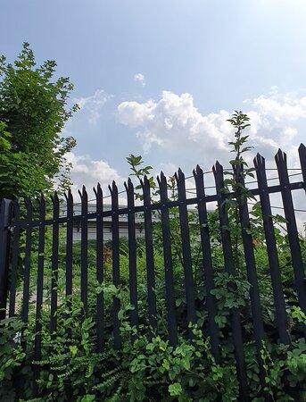 Meadow Lane