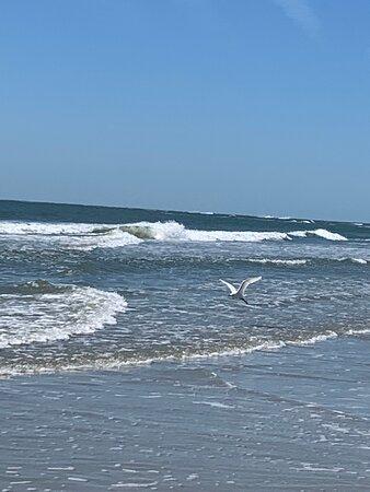 美特爾海灘照片
