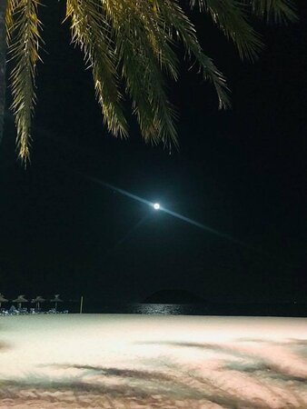Moonlight on Magaluf Beach (nearby the hotel)