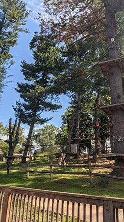 Elmwood park zoo 4
