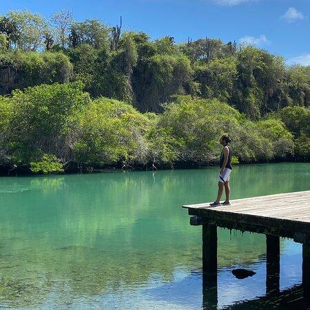 Laguna de las ninfas, Puerto Ayora