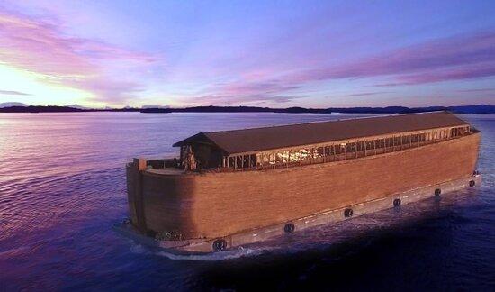Ark Museum