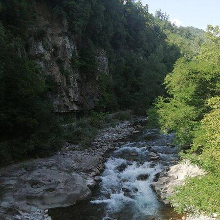 Wild Canyoning
