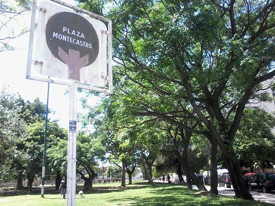 Plaza Monte Castro
