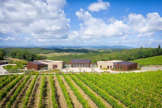 Castelnuovo Berardenga, Italia: Winery